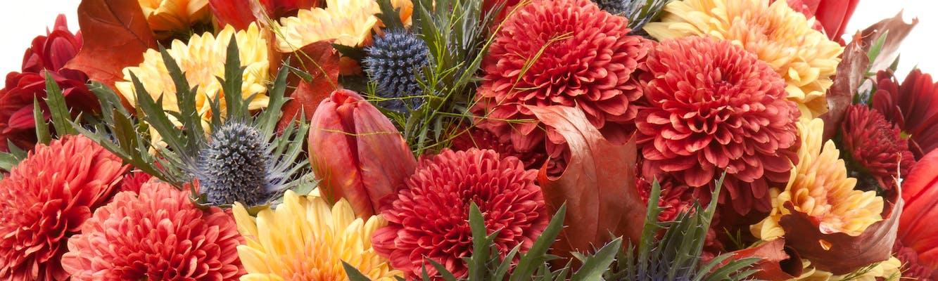 Arlington Dallas Hurst Same Day Flower Delivery Bice S