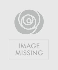 Gift box vase filled with red flowers, pine cones and winter greenery