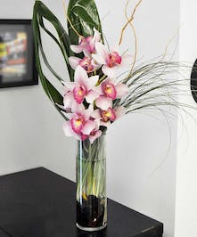 Pink orchids in a clear glass cylinder vase with luxurious greenery.