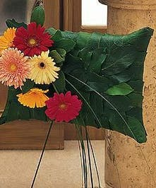 Uplifting Gerbera Pillow