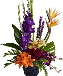 Urn arrangement with cymbidium orchids, birds of paradise and philodendron leaves.