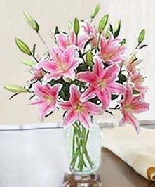 Beautiful Fragrant Lilies
