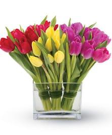 Bright Tulips!