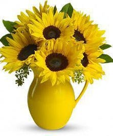 Pitcher of Sunflowers
