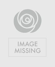 Blooming Orchid Bud Vase