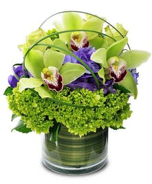 Cymbidium orchids and hydrangea in a green cylinder vase.