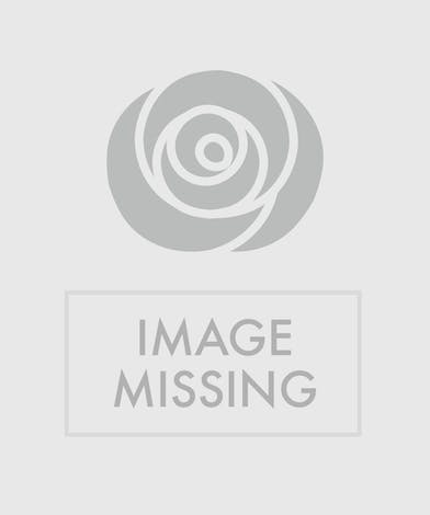 Pastel pink, yellow and green flowers in a glass cube vase.