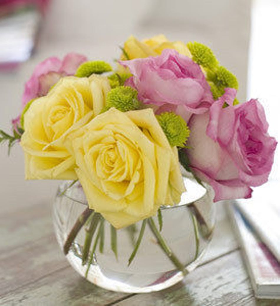Pink lemonade roses available for nationwide delivery mightylinksfo