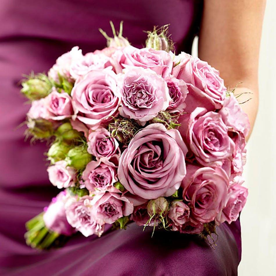 Veronica - Bice\'s Florist Fort Worth, Dallas & Hurst Same Day Flower ...