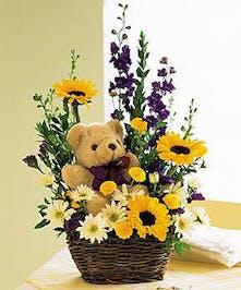 Assorted Fresh Cut Flowers & Teddy Bear Gift Inc.