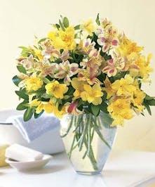 Beautiful Vased Peruvian Lilies