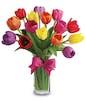 E131 (15 Tulips)